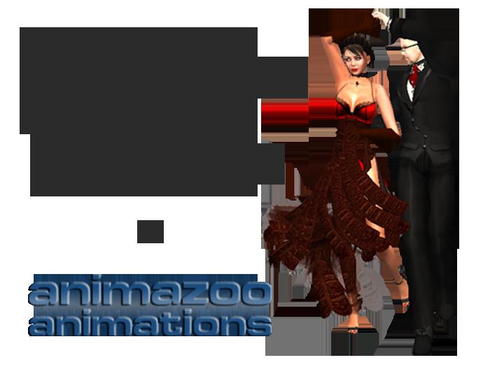 Couples Dance Instructions
